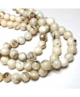 5 perles coquillages 8 mm